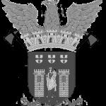 logo-bvbraga-bvb-bombeiros-braga-portugal